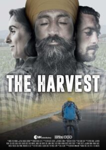 The harvest locandina