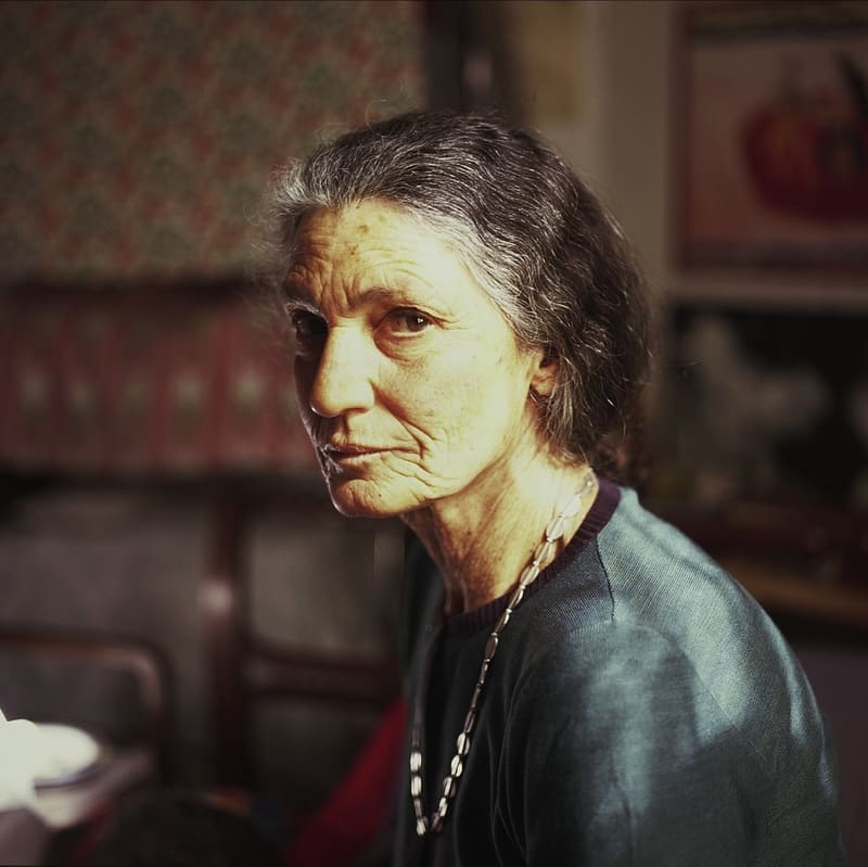 Biografilm Festival - La scomparsa di mia madre