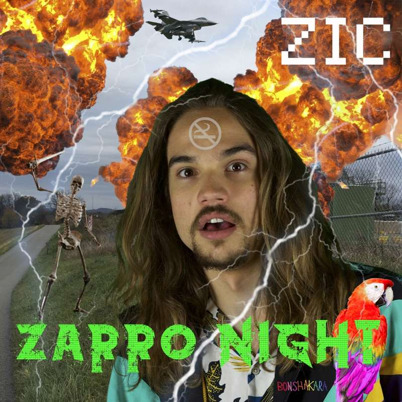 Zic - Zarro Night cover