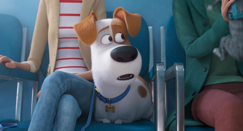 Max dal veterinario - Pets 2