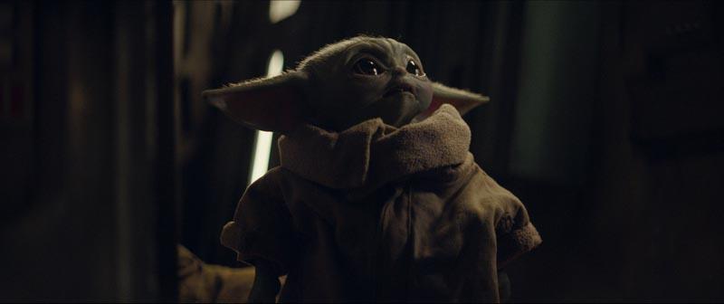 Porg, nuovo personaggio della saga. Dopo le storie di Jango e Boba Fett, l'universo di Star Wars accoglierà un altro guerriero: The Mandalorian