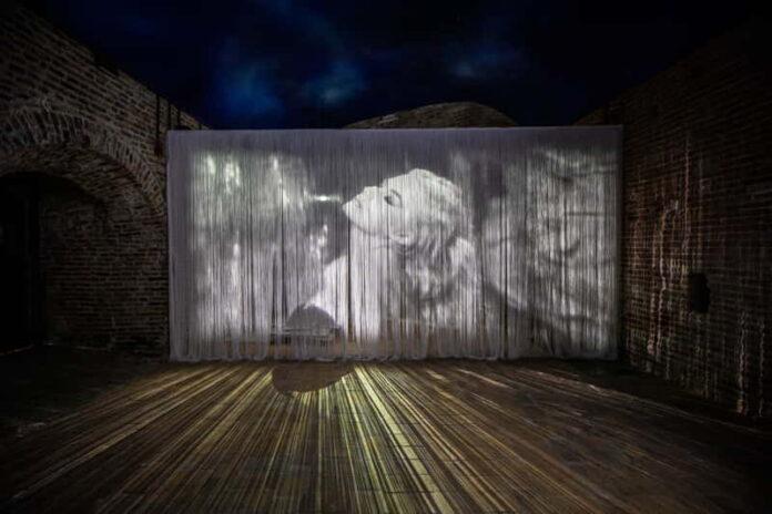 Fellini Museum (foto Lorenzo Burlando) 1